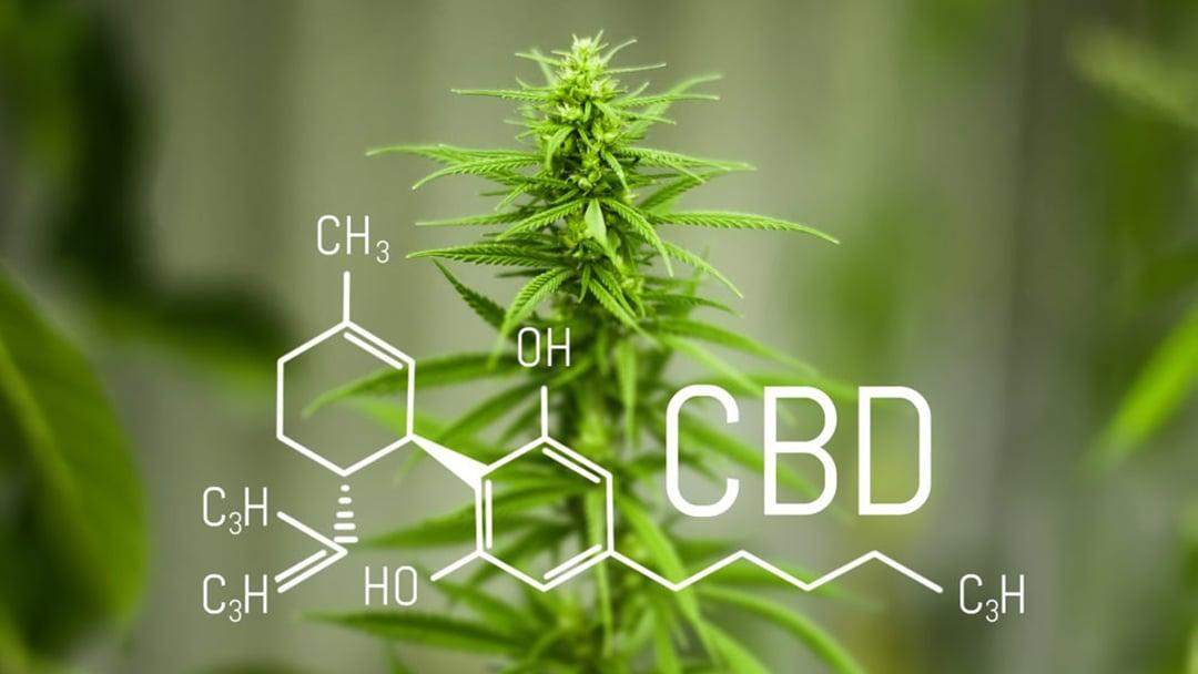 CBD_Industry